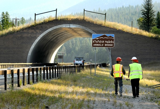 A wildlife overpass in Montana, likely similar to the ones which could be built on Highway 85 in North Dakota.
